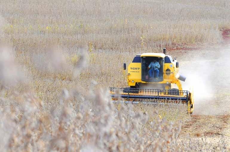 Anderson Coelho - Programa de subvenção cobriu apenas 8% da área plantada no País