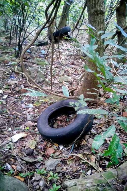 André Tressoldi/Divulgação - O nível elevado de poluição do local pode ser observado na água e entre as trilhas