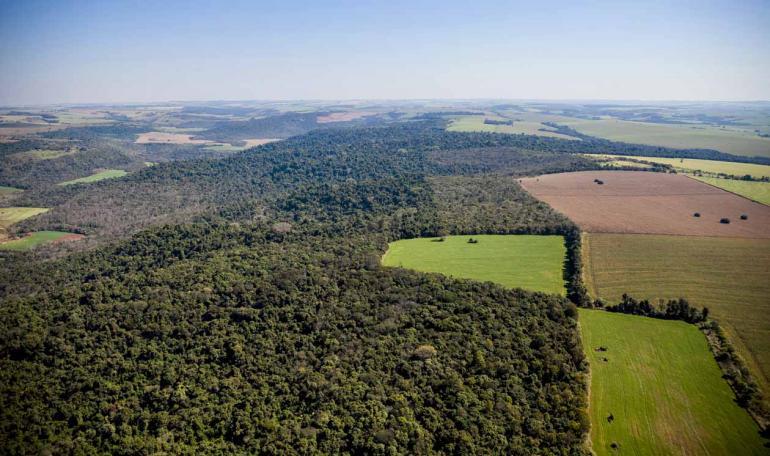 Sérgio Ranalli/31-07-2015 - A área de mata preservada corresponde a 47,7% do total dos imóveis rurais brasileiros cadastrados no Sistema Nacional de Cadastro Ambiental Rural (Sicar)