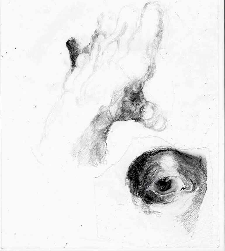 Ilustração Fernão